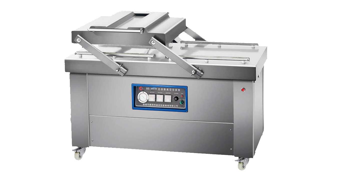 double chamber vacuum packaging machine DZ600/2S