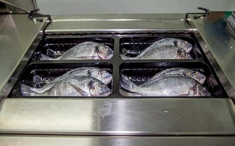 упаковка с модифицированной атмосферой для свежей рыбы