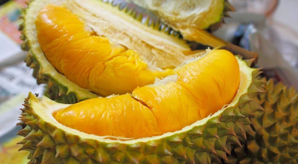pulpe de durian