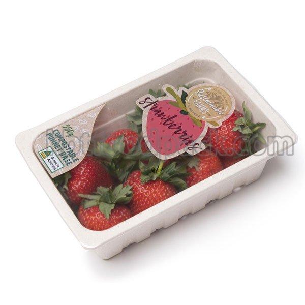 딸기 포장 기계